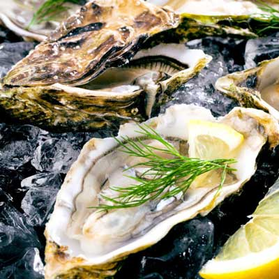 Osta Fine Foods Freshest oysters