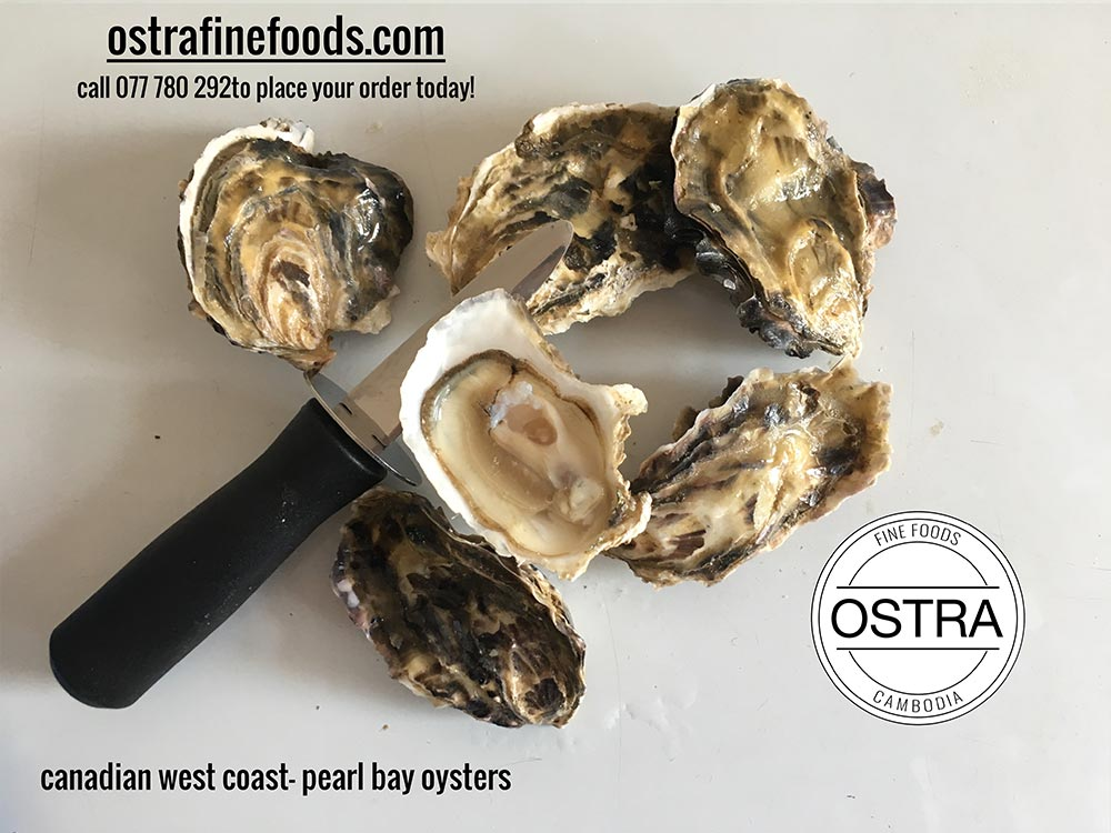 Canadian Peral Bay Oysters